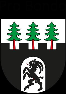 Pro Bondo Logo